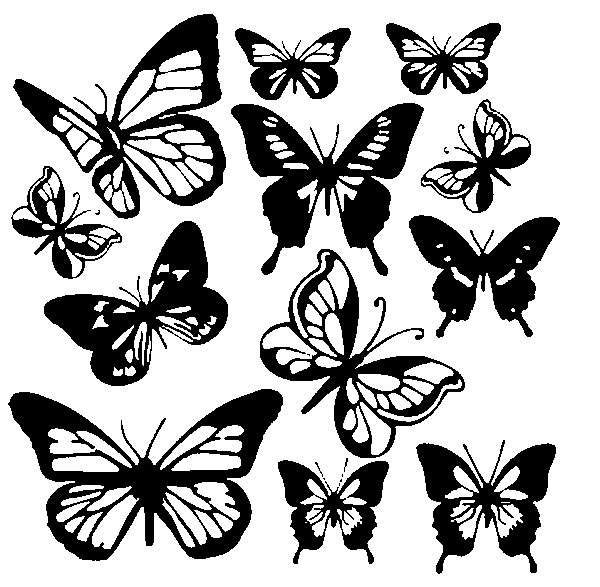 Pagina Colorazione Farfalla Immagini Da Colorare Pravreshcom