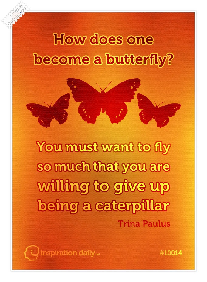 Butterfly Quotes Sayings Quotezco