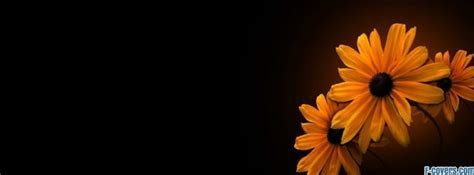 flowers yellow Facebook Cover timeline photo banner for fb