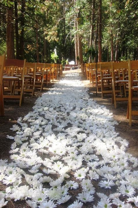 Evergreen Lodge Weddings   Get Prices for Yosemite Wedding