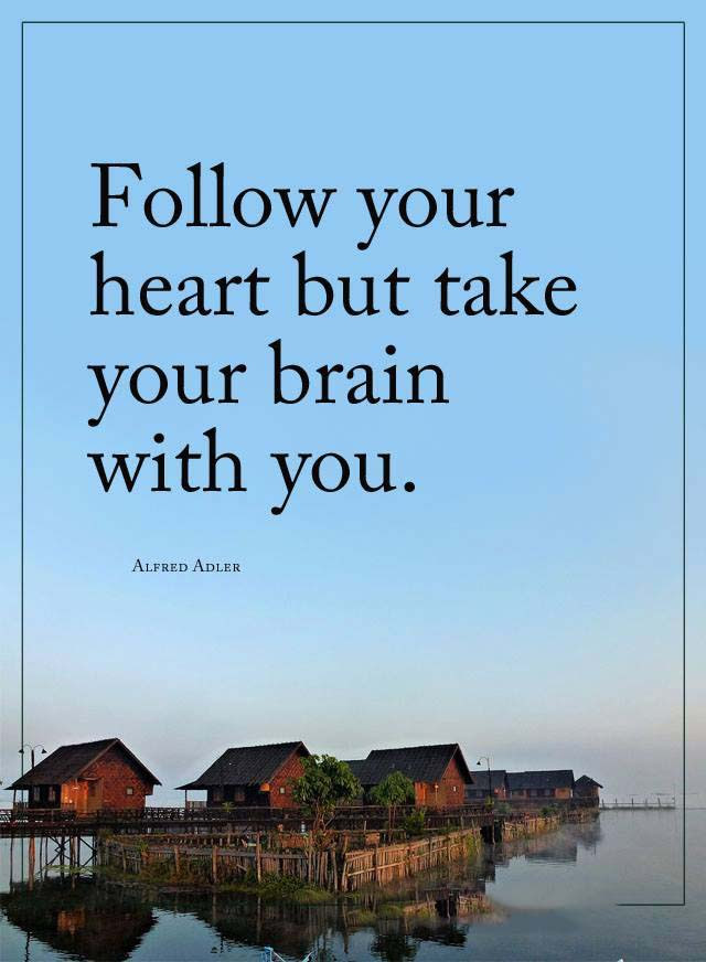 Follow Your Heart Quotes Area