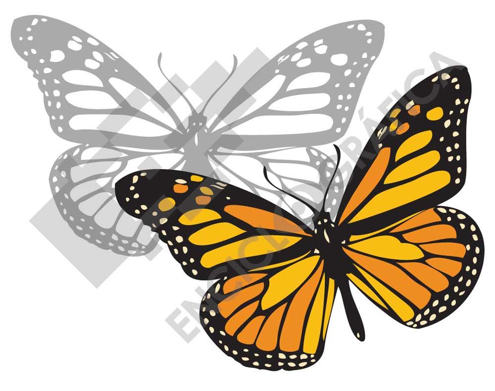 Mariposa Monarca Plantilla Para Stencil