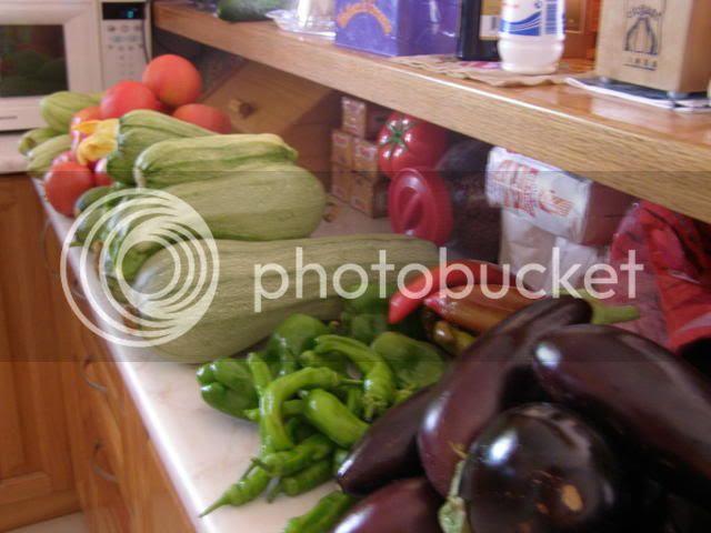 fresh garden summer produce