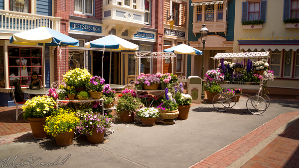 Disneyland Resort, Disneyland, Main Street U.S.A., Center, Street, Flower, Market