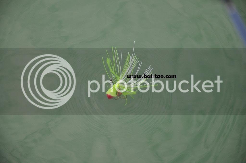 photo DSC_4580_zps48cb2da2.jpg