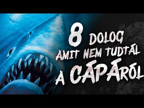 8 dolog amit NEM tudtál a Cápa-ról