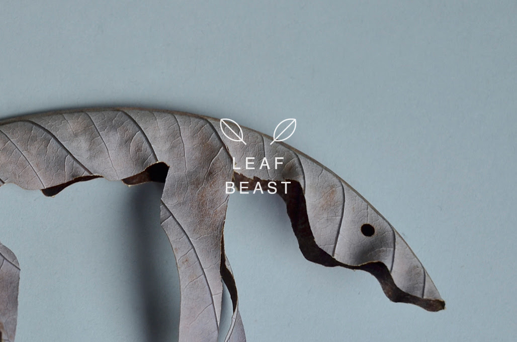 Leaf Beasts: Simple Animal Sculptures Cut from Dried Magnolia Leaves leaves animals
