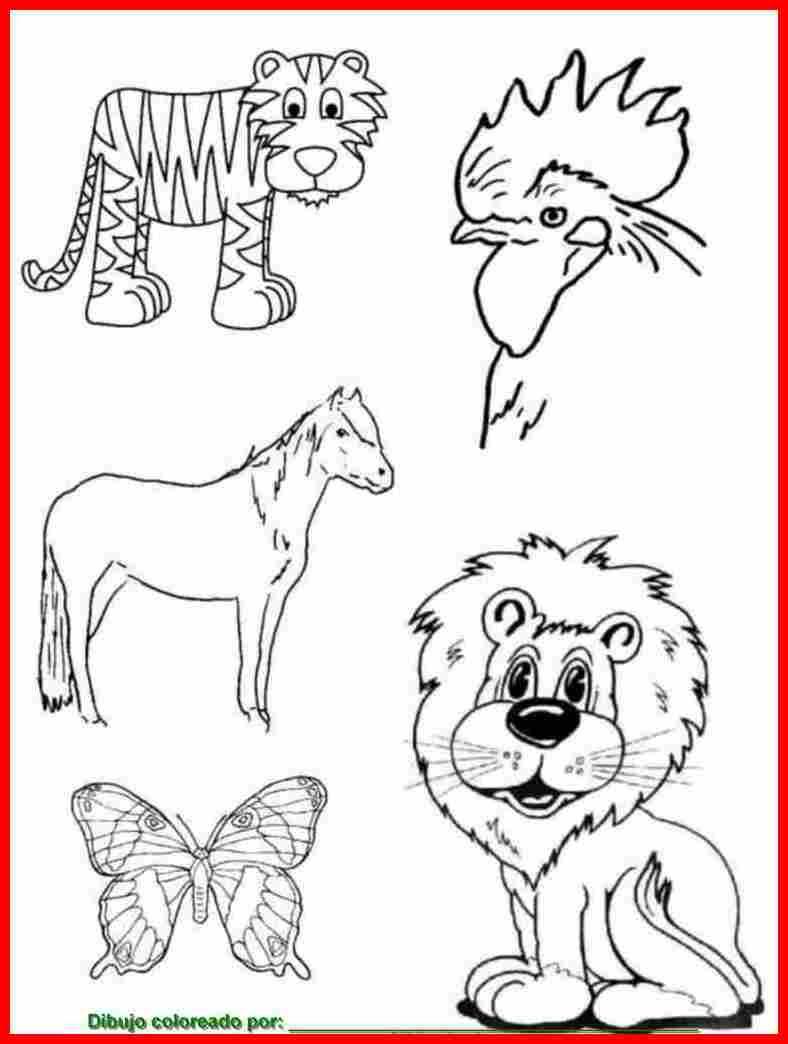 Dibujos Para Colorear Dibujos Infantiles Para Pintar Y Colorear