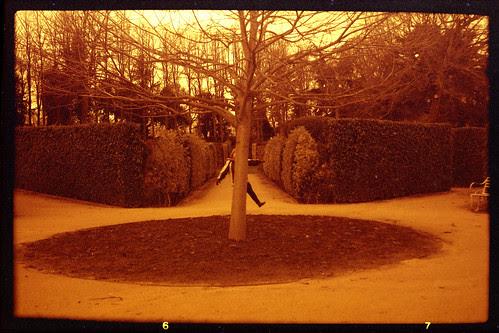 Union Jack Garden Wentworth Castle Gardens by pho-Tony