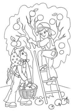 Maple Tree Coloring Page At Getdrawingscom Free For Personal Use