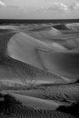 Sand dunes of Maspalomas bw