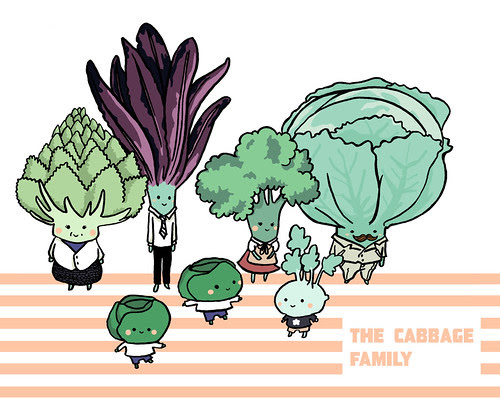 The cabbage family! by Whenaworld