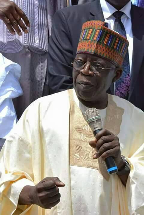 Image result for Presidency: ''Tinubu