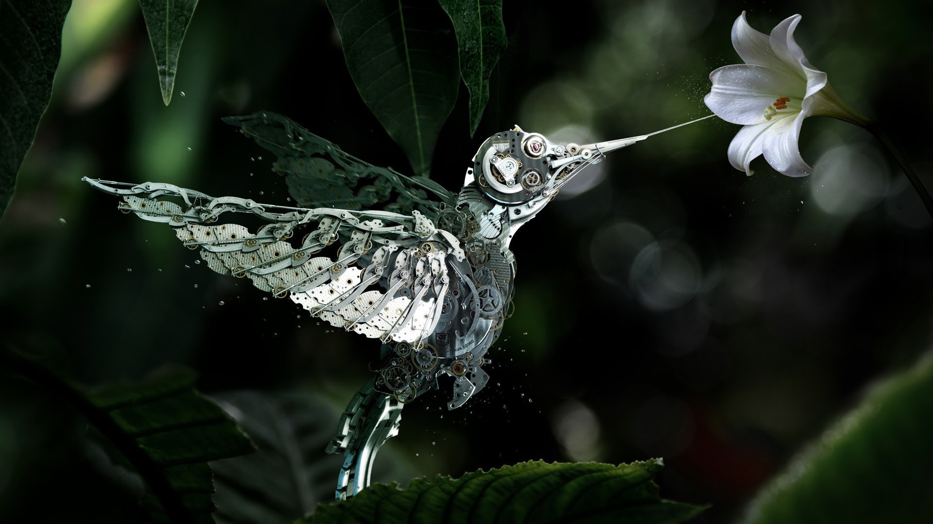 animals, Digital Art, Flowers, Hummingbirds, Machine, Birds Wallpapers HD / Desktop and Mobile