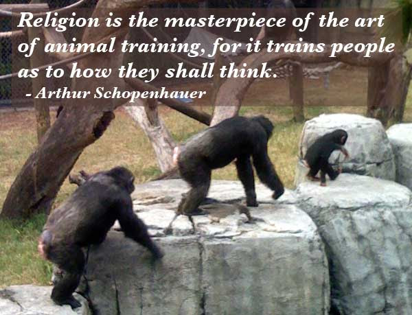 Funny Religion Quotes Funny Quotes About Religion