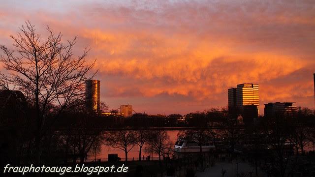 Abendglüchen am Kölner Rhein