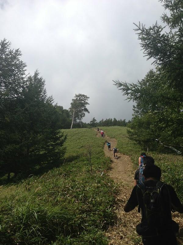 Utsukusigahara TrailRun And Walk 2013