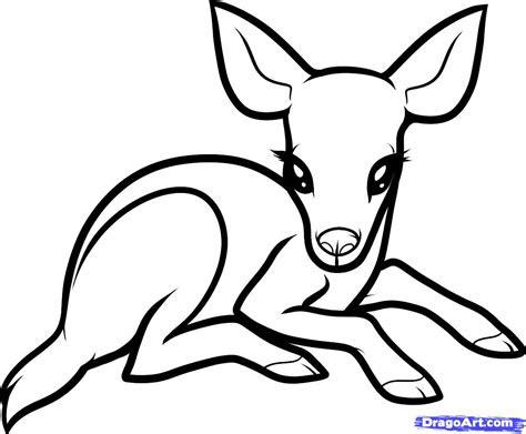 draw  baby deer baby deer step  step forest