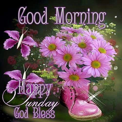 Good Morning Happy Sunday With Flowers Images Flowers Healthy