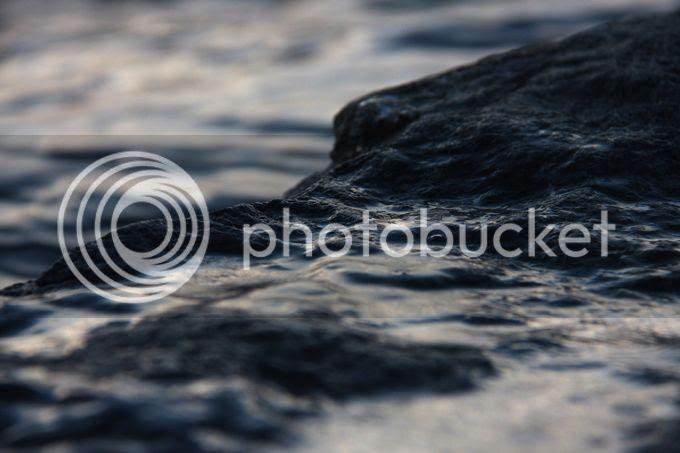 photo xmmas296_zps8917fc63.jpg