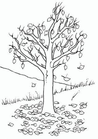Herbst Baum Malvorlage