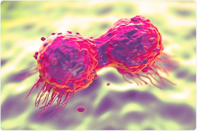 Dividing breast cancer cell - Image Credit: royaltystockphoto.com / Shutterstock