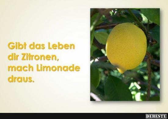 Gibt Das Leben Dir Zitronen Lustige Bilder Sprüche Witze Echt
