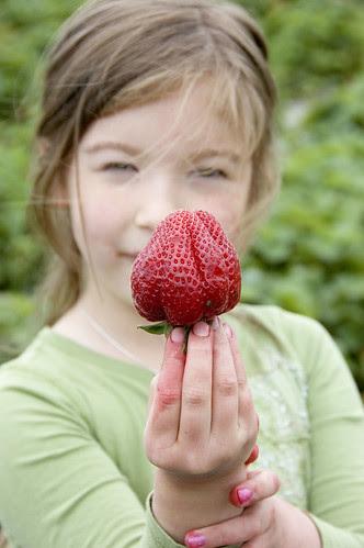 strawberry jam - Juju's giant strawberry