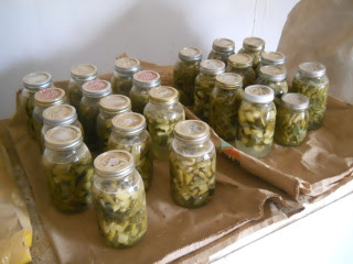 Lacto-Fermented Preserved Garden 2014 Produce