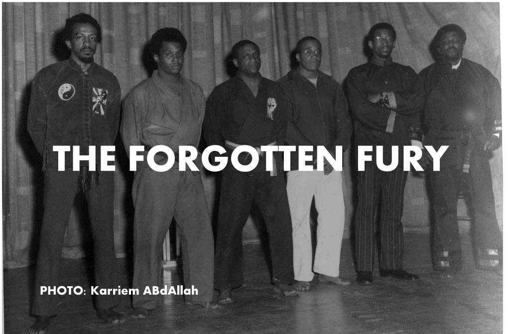 Image result for blacks in martial arts