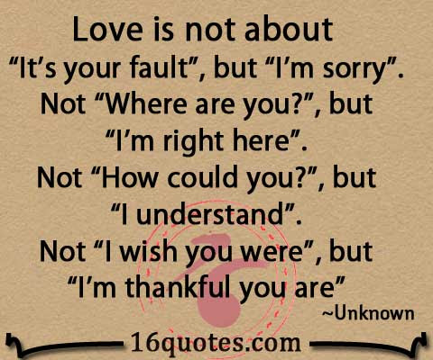 Love Is Not About Its Your Fault