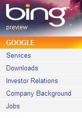 Bing Google drilldown