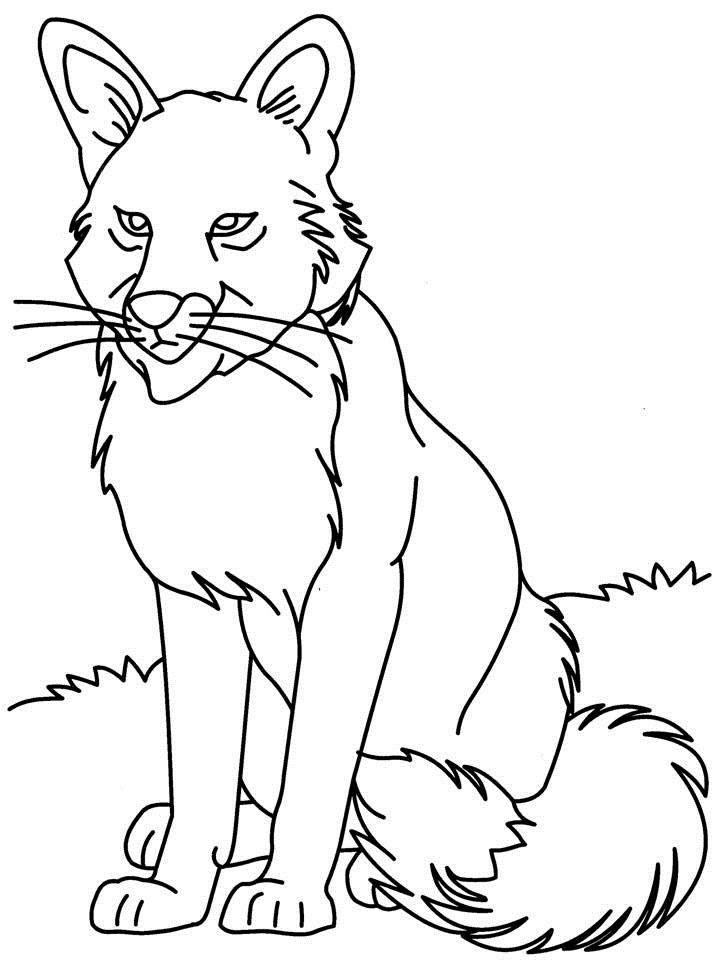 Big Bad Wolf Coloring Page - Coloring Home