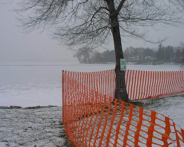 The orange fence