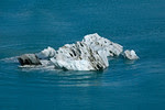 Iceberg in Disenchantment Bay