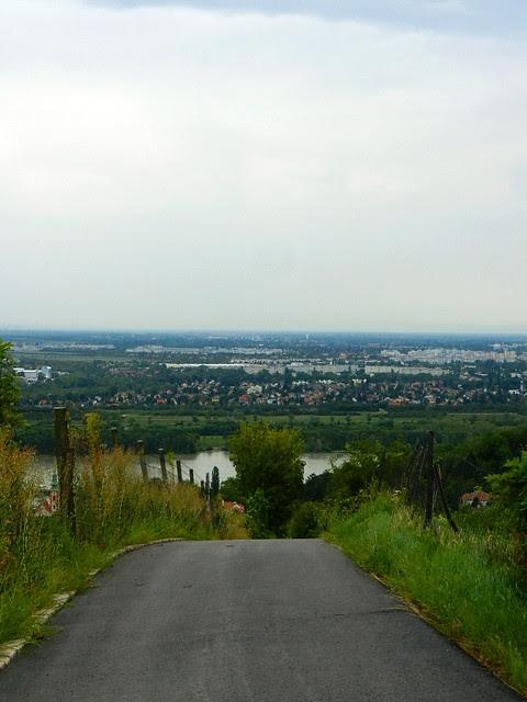Kahlenbergerdorf_2012_15