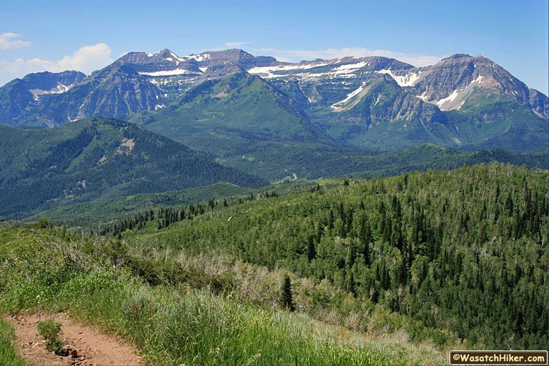 Resultado de imagen de wasatch mountains