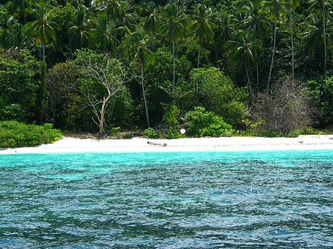 http://www.pulau-tioman.de/big/pulau_tioman_17.jpg