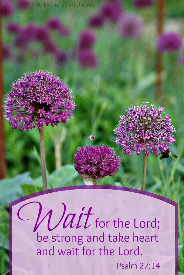 Wait for the Lord :: Photo Scripture Quote from Psalm 27:14 :: Joy Day! :: AnExtraordinaryDay.net