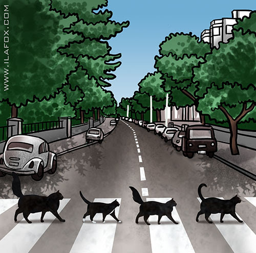 Abbey Road, Abbey Cat Road, by ila fox