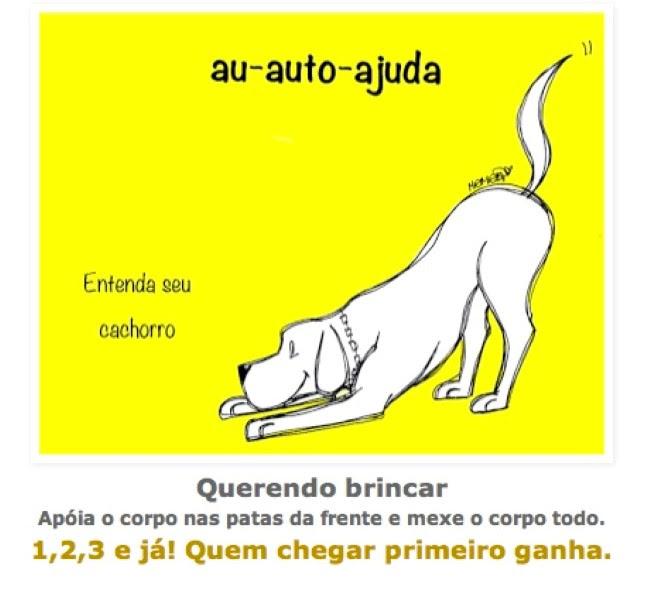 posturas-caninas-5