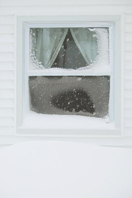 Snow 08