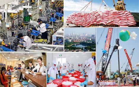 tái cấu trúc, cải cách, kinh tế vĩ mô, Chương trình Giảng dạy kinh tế Fulbright