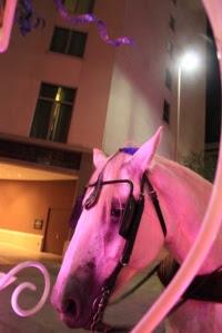 Horse behind us (427x640)