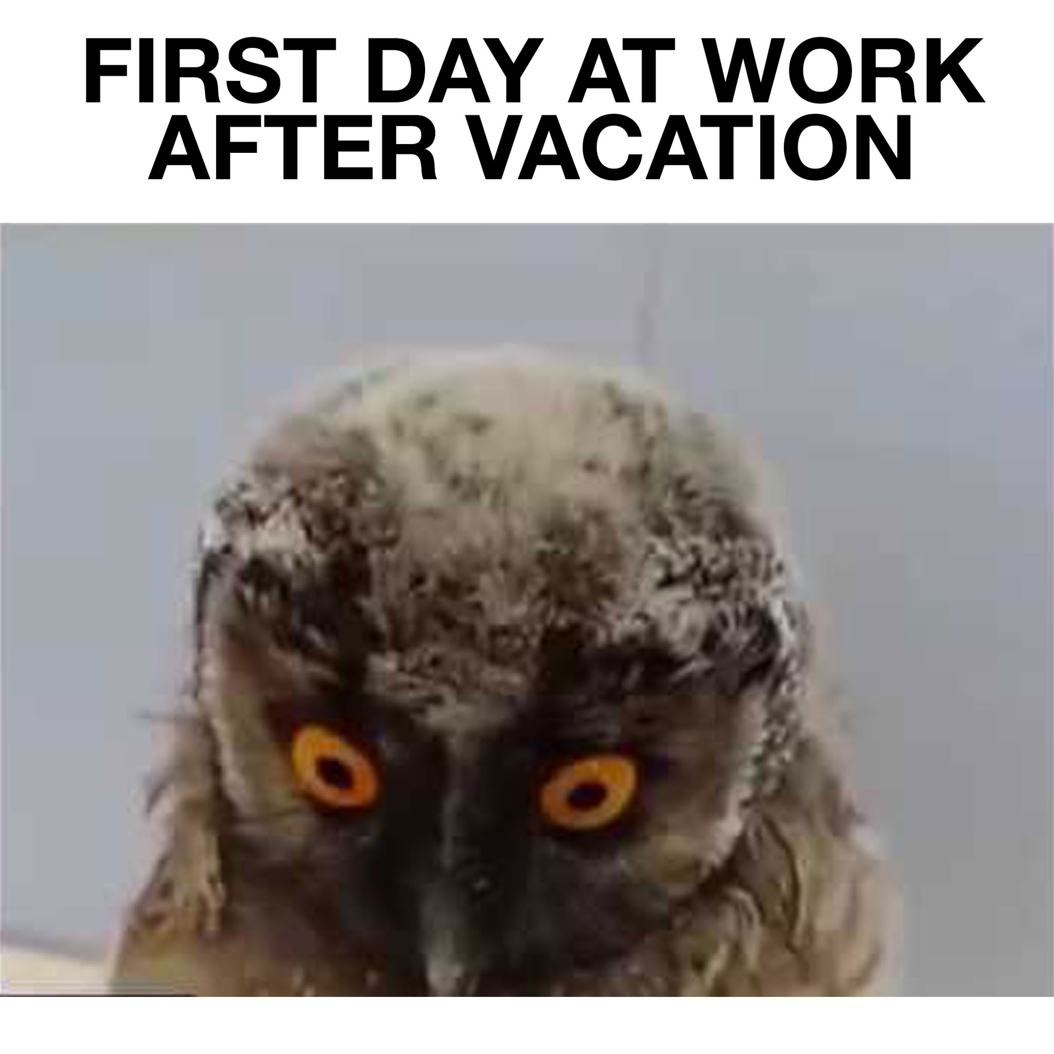 Quotes about Work after vacation (19 quotes)