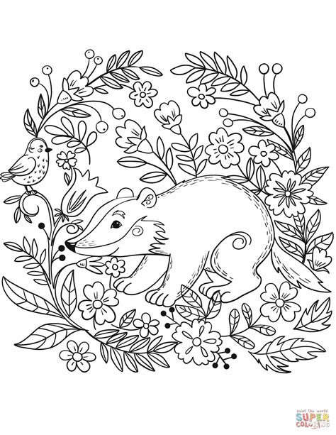 badger nocturnal animal coloring pages print coloring