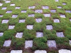 Moss Garden Tofukuji Temple