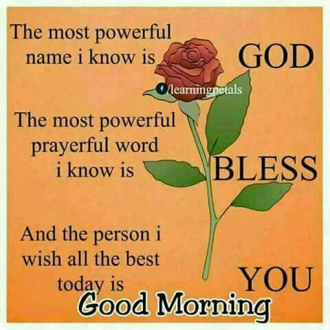 Floral God Bless You Quote For A Good Morning Pictures Photos And