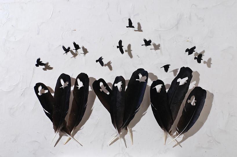 feather dioramas by chris maynard