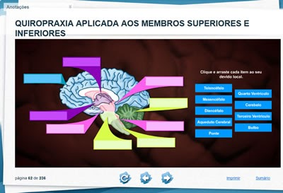 Dica de 2 cursos online sobre Quiropraxia